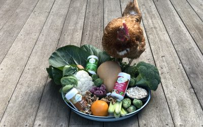 MY WINTER FOOD FOCUS – IMMUNITY, ENERGY & FIGHTING FIT!